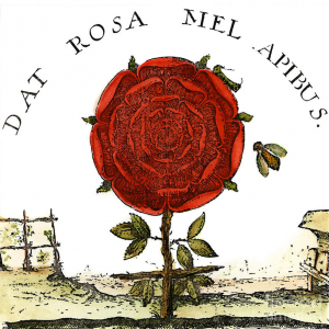 Rosy Cross: The Rose gives honey to the bees