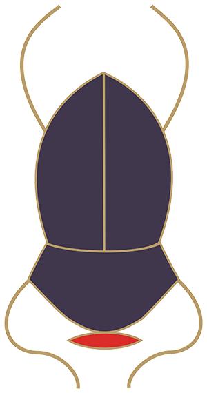 Sun Boat of Ra: Khephra Scarab from Egyptian Tarot of Thelema